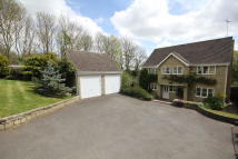 Detached property in The Firs, Wansford