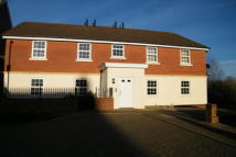 Apartment in Daventry