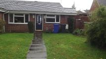 Elm Drive Bungalow to rent
