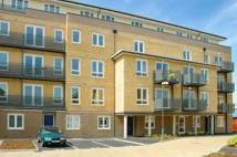 Hereford Road Flat Share