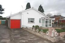 Detached Bungalow in Goldcroft Court...