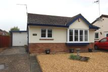Detached Bungalow to rent in Peartree Close, Caerleon...