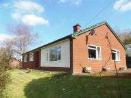 3 bed Detached Bungalow for sale in Gwynfa, Llandyssil...