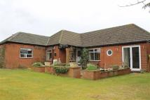 Detached Bungalow in Hithercroft...