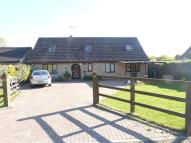 Detached Bungalow to rent in Paynes Lane, Feltwell