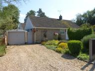 Detached Bungalow for sale in Crabbes Close, Feltwell