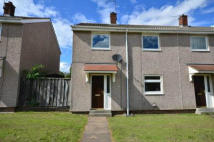 3 bedroom semi detached property to rent in Birch Tree Walk...