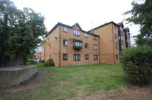 Grayling Court Studio flat to rent