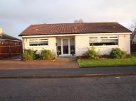 Detached Bungalow for sale in Montgomery Crescent...