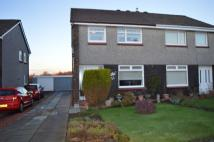 3 bed semi detached house in Barra Avenue, Wishaw...