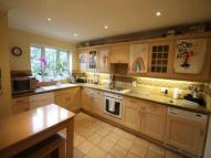 Detached house to rent in Saxonbury Road...