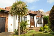 Detached Bungalow to rent in Rodmell Avenue, Saltdean...