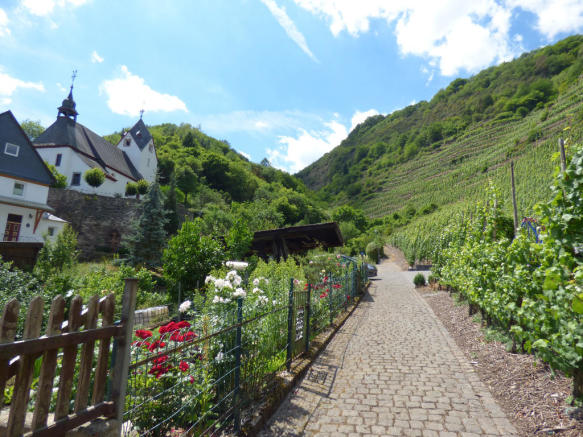 Garden at vineyards