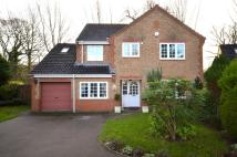 4 bed Detached property in Cringleford