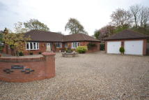 5 bedroom Detached Bungalow for sale in The Street, Bracon Ash