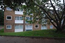 Flat to rent in Tattershall Drive...