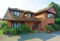 5 bed Detached house in Buffetts Close...