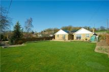 Bungalow for sale in Whitehill, Tolpuddle...