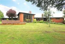 Detached Bungalow for sale in Bulford Road, Durrington...