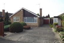 3 bed Bungalow to rent in Whitworth Drive...