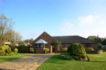 4 bedroom Detached Bungalow in The Close, Cleadon...