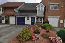 Haven Court semi detached property for sale