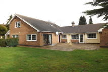 Bungalow to rent in Coventry Road, Burbage...