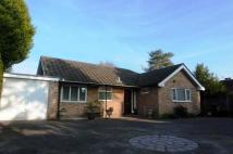 Bungalow to rent in Sweetwater Lane...