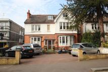 Coolhurst Road Apartment to rent