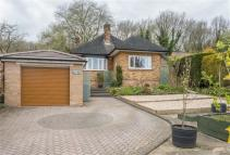 4 bed Detached Bungalow for sale in Main Street, Grenoside...