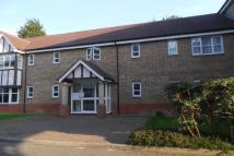 Flat to rent in Grebe Court Shearwater...