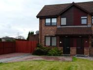 3 bedroom semi detached home to rent in Carrongrove Road, Carron...
