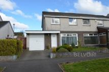 3 bedroom semi detached property to rent in Hazel Road, Banknock