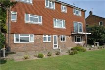 Pashley Road Flat to rent