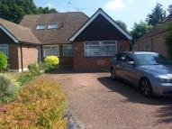Semi-Detached Bungalow to rent in Oak Avenue, Ickenham...