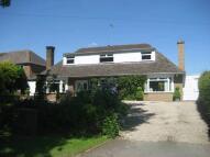 Tutbury Road Rural Detached Bungalow for sale