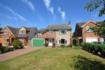Layston Meadow Detached house for sale