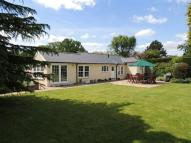 Detached Bungalow in Letty Green, Hertford