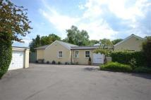 Detached Bungalow for sale in Letty Green, Hertford