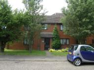 Studio flat to rent in Brackyn Road, Cambridge...