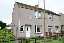 2 bed semi detached home for sale in 53 Park Avenue, Bilston...