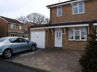 semi detached house to rent in Magdelen Close, Langney