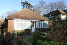 3 bedroom Detached Bungalow for sale in Springford Crescent...