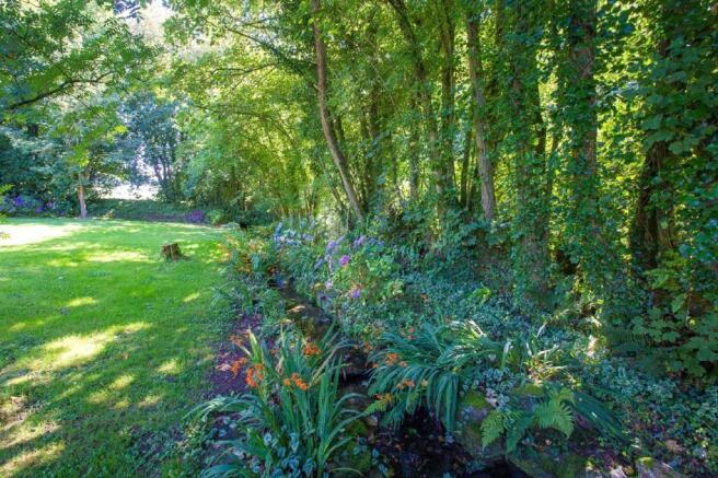 garden and stream