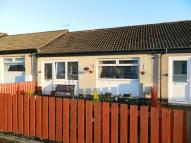 1 bedroom Bungalow for sale in Carfin Road, Wishaw, ML2