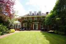 Detached house to rent in Elm Walk, Hampstead...