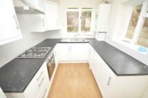 Brackenbury Road house to rent