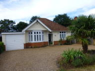 3 bedroom Detached Bungalow to rent in Loxley Road...