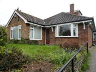 3 bed Detached Bungalow to rent in Broaden Lane, Hempnall...