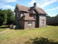 Detached house in Martineau Lane, Norwich...